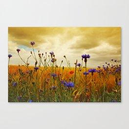 Summefield Impressions Canvas Print
