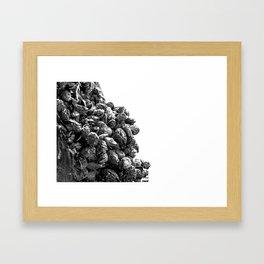 blackshells ii Framed Art Print