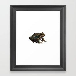 Frog 6 Framed Art Print