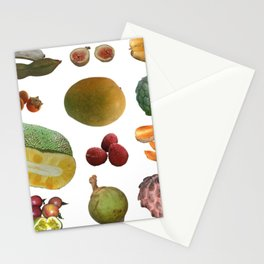 Exotic Fruit Collage Stationery Cards