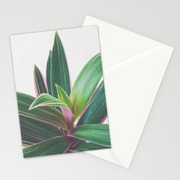 Oyster Plant Stationery Cards