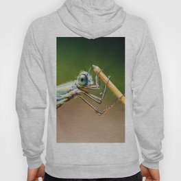Dragonfly Macro Portrait In Nature, Nature Wall Art Print, Insect Close-Up Photography, Large Print Hoody