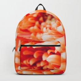 Orange Germini Close Up 3 Backpack
