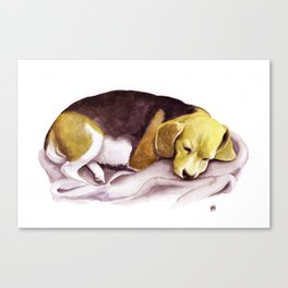 Beagle Watercolor Painting Canvas Print
