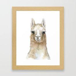 Llama Watercolor Painting Framed Art Print