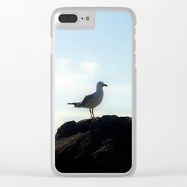 Bird's eye View Clear iPhone Case
