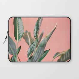 Palm on pink   Botanical photography print   Spain travel photo art Laptop Sleeve