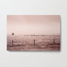 Single Tree In The Pasture, Montana Metal Print