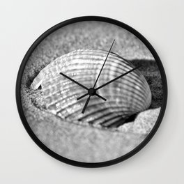 Sea shell. Wall Clock