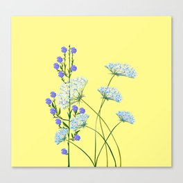 My Kentucky Wild Flowers, Queen Anne Lace and Flax Canvas Print