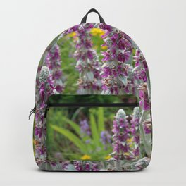 Lambs Ear Blooming in the Garden Backpack
