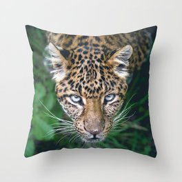 Splendid Beautiful Jungle Leopard Staring Head Profile Close Up Ultra HD Throw Pillow