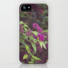 purple flower. iPhone Case