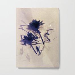 Lumen S3 VE4 Metal Print