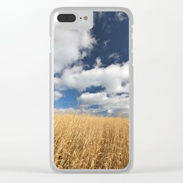 Golden Grass under a dramatic, cloudy sky Clear iPhone Case