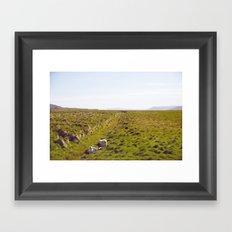 Sheeps in Iceland Framed Art Print