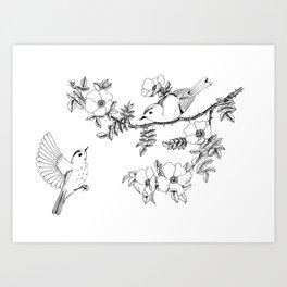 Birds on a flowering branch Art Print