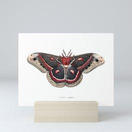 Cecropia Moth Mini Art Print