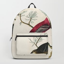 Pine Grosbeak from Birds of America (1827) by John James Audubon etched by William Home Lizars Backpack