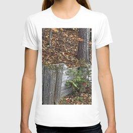 Wood Wall T-shirt