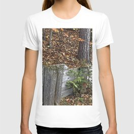 Wood Wall T-shirt