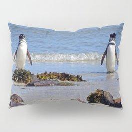 Magellanic Penguins Pillow Sham