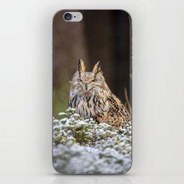 Western Siberian Owl iPhone Skin