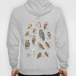 Owls Hoodie