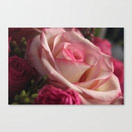 Rose 3 Canvas Print