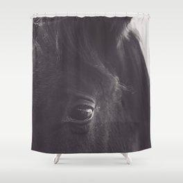 Original wild horses photo, nature landscape, animal lovers, love, black & white photography, horse Shower Curtain