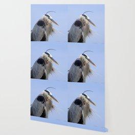 Blow Dry Wallpaper
