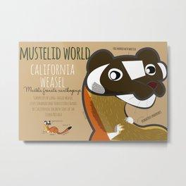 Mustelid Worl: California Weasel (c) 2017 Metal Print