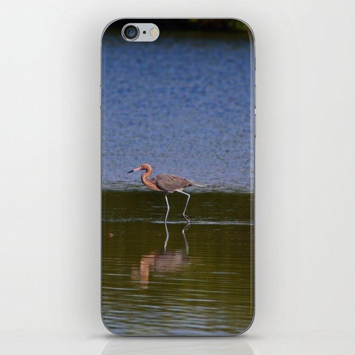 Ding Dance iPhone Skin