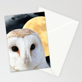 Barn Owl Bird Modern Country Art Modern Cottage Chic Art A493 Stationery Cards