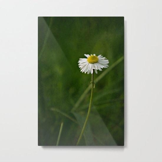 Daisy Metal Print