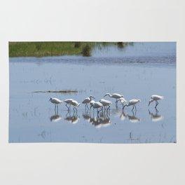 Flock of Snowy Egrets at Chincoteague No. 1 Rug