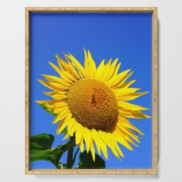 Bold Sunflower 2 Serving Tray