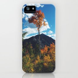 Fall Change iPhone Case