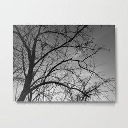 November Tree Metal Print