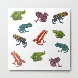 Frogs. Metal Print
