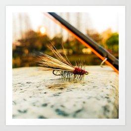 Caddis Fly Art Print