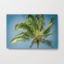 keanae hawaiian coconut palm Metal Print