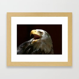 Bald Eagle | Call of the Wild | Eagles| Wildife | Eagle Art | Eagle Photography Framed Art Print