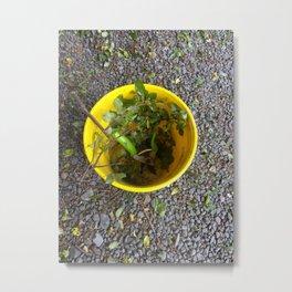 Gardening Bucket Metal Print