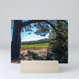Island of Porquerolles Mini Art Print