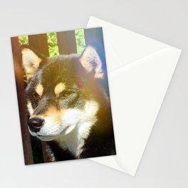 Summer Kuma Stationery Cards