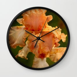 Peach Iris Wall Clock