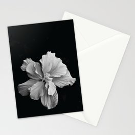 Hibiscus Drama - Black and Grey Stationery Cards