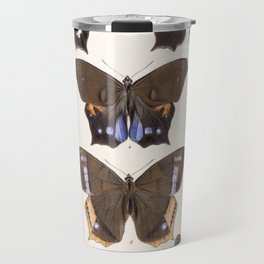 Moths And Butterfly Vintage Scientific Hand Drawn Insect Anatomy Biological Illustration Travel Mug