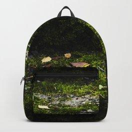 Mossy steps Backpack
